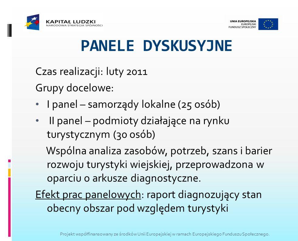 PANELE DYSKUSYJNE Czas realizacji: luty 2011 Grupy docelowe: I panel – samorządy lokalne (25 osób) II panel – podmioty działające na rynku turystyczny