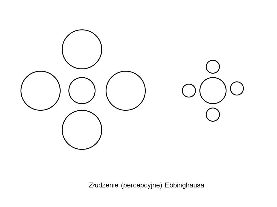 Spostrzegający: Wola/ Zasoby/ Doświadczenie/ Cele/ Potrzeby Wyrazistość bodźca: Cechy wyraziste Automatyzmy
