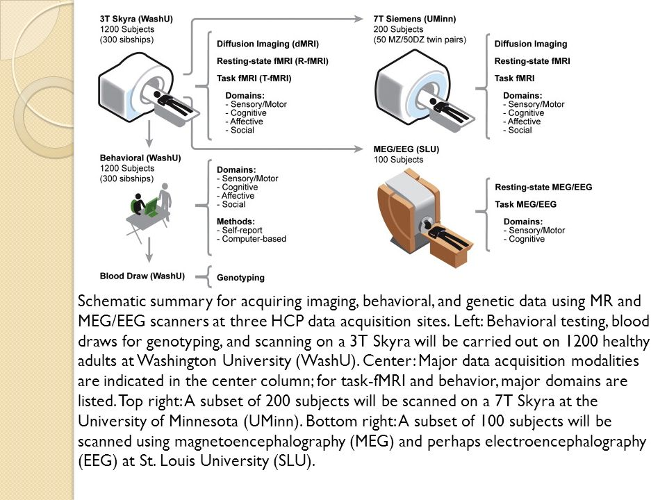 Schematic summary for acquiring imaging, behavioral, and genetic data using MR and MEG/EEG scanners at three HCP data acquisition sites. Left: Behavio