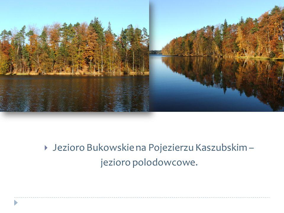 Jezioro Bukowskie na Pojezierzu Kaszubskim – jezioro polodowcowe.