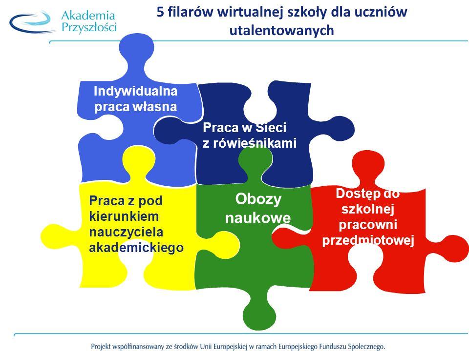 Dostęp do szkolnej pracowni przedmiotowej Obozy naukowe Praca w Sieci z rówieśnikami Indywidualna praca własna Praca z pod kierunkiem nauczyciela akad