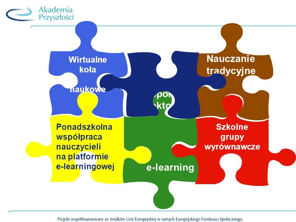 Nauczanie tradycyjne Szkolne grupy wyrównawcze Lokalne zespoły projektowe e-learning Wirtualne koła naukowe Ponadszkolna współpraca nauczycieli na platformie e-learningowej