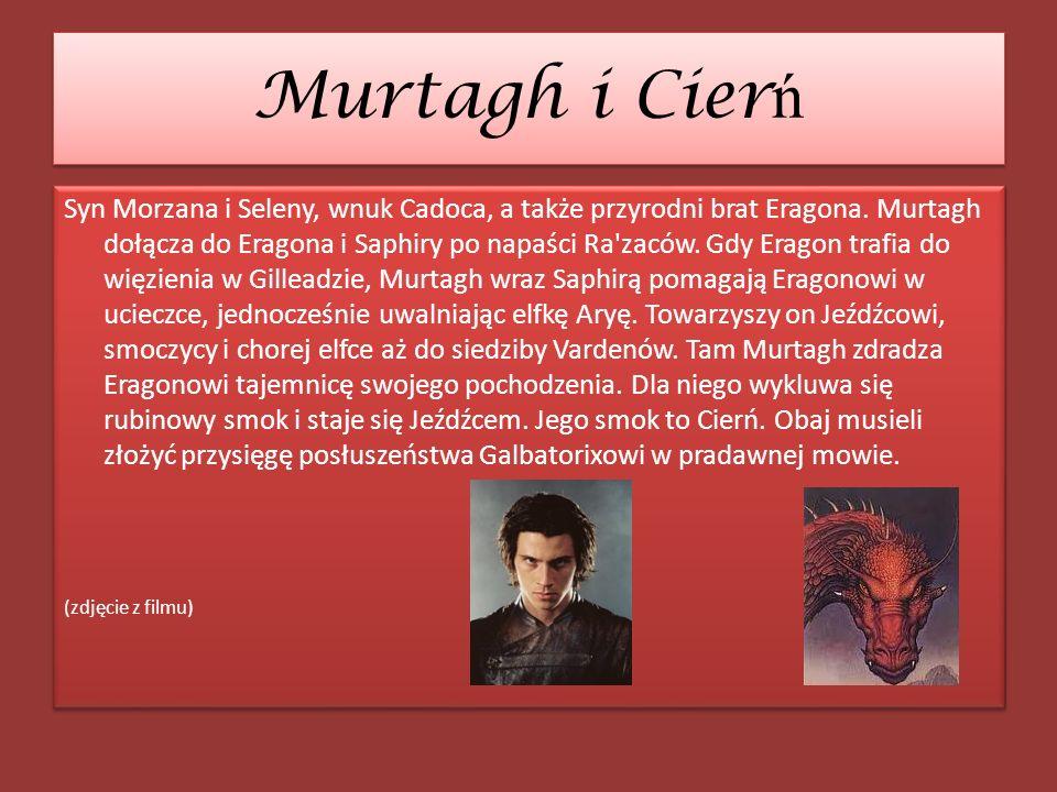 Murtagh i Cier ń Murtagh i Cier ń Syn Morzana i Seleny, wnuk Cadoca, a także przyrodni brat Eragona. Murtagh dołącza do Eragona i Saphiry po napaści R