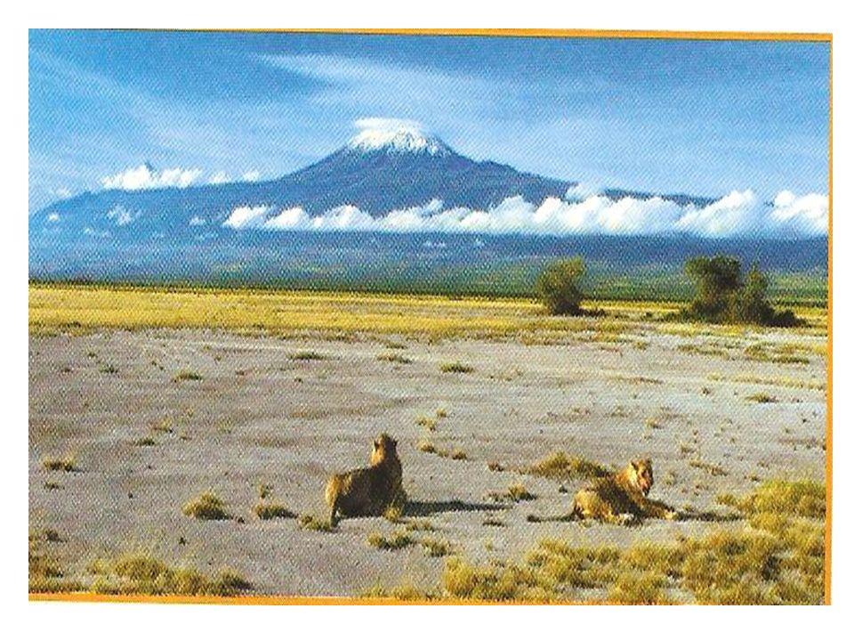 KILIMANDŻARO (KIBO) Wjej skład wchodzą trzy szczyty będące pozostałością po wulkanach.