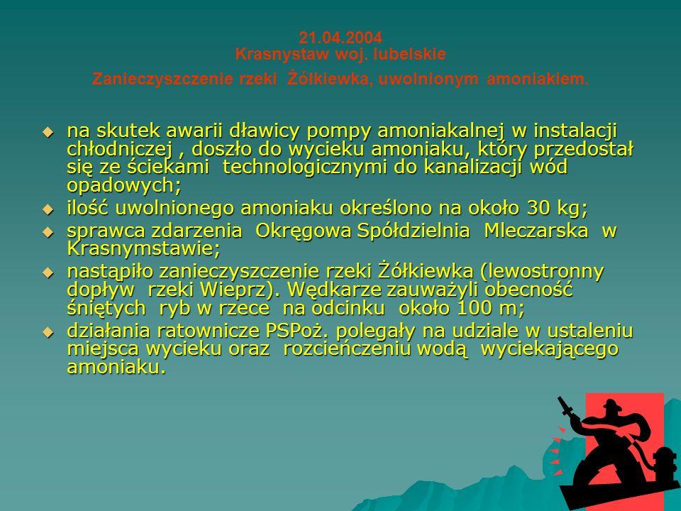 STUDIUM PRZYPADKÓW AWARII PRZEMYSŁOWYCH 2004 – 2006