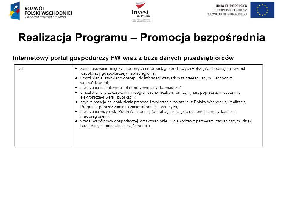 Realizacja Programu – Promocja bezpośrednia Internetowy portal gospodarczy PW wraz z bazą danych przedsiębiorców Cel zainteresowanie międzynarodowych