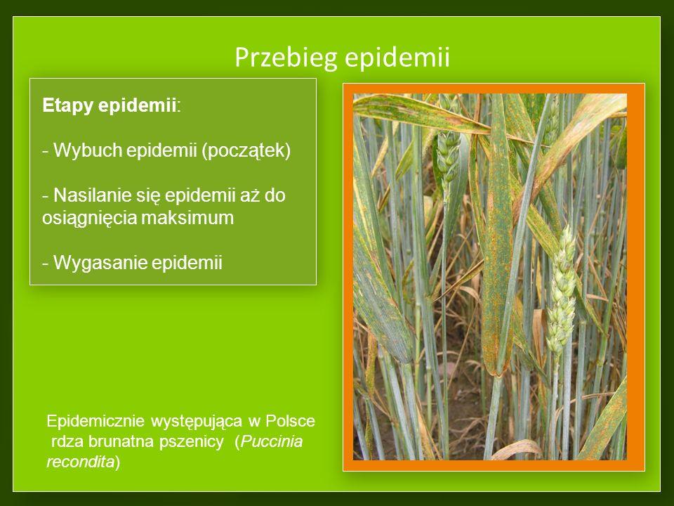 Test sprawdzający 1. Epidemiologia to nauka zajmująca się: a.środowiskiem rolniczym b.czynnikami chorobotwórczymi c.biologią grzybów d.warunkami i spo
