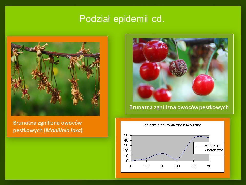 Podział epidemii Epidemie monocykliczne (1 cykl rozwojowy w ciągu roku) Epidemie policykliczne (wiele cykli w ciągu roku) Krzywa epidemii monocykliczn