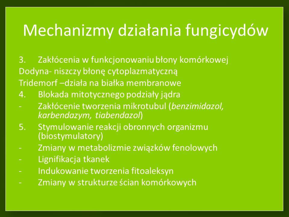 Mechanizmy działania fungicydów Działanie grzybobójcze – fungicydalne Działanie hamujące rozwój – fungistatyczne 1.Zakłócenia procesów energetycznych