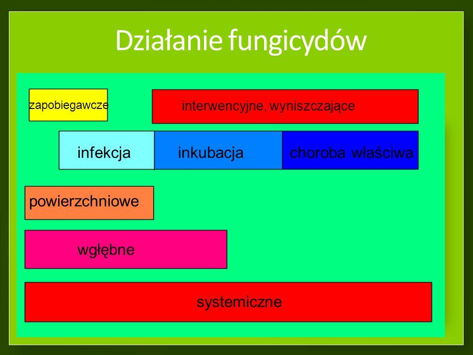 Działanie fungicydów działanie zapobiegawcze (przed infekcją) działanie interwencyjne (w czasie infekcji oraz inkubacji) działanie wyniszczające (w cz