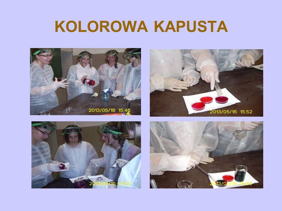 KOLOROWA KAPUSTA