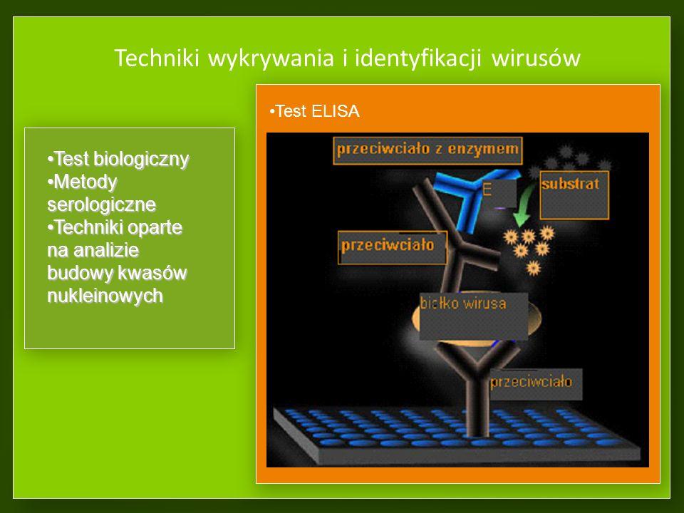 Techniki wykrywania i identyfikacji wirusów Test ELISA Test biologicznyTest biologiczny Metody serologiczneMetody serologiczne Techniki oparte na analizie budowy kwasów nukleinowychTechniki oparte na analizie budowy kwasów nukleinowych