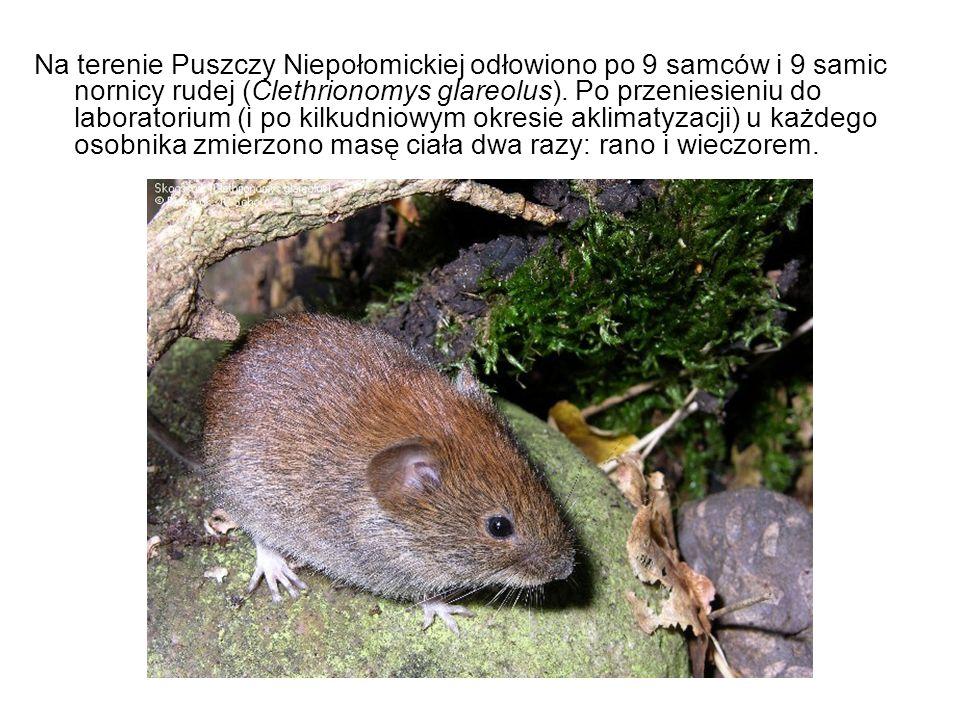 Na terenie Puszczy Niepołomickiej odłowiono po 9 samców i 9 samic nornicy rudej (Clethrionomys glareolus). Po przeniesieniu do laboratorium (i po kilk