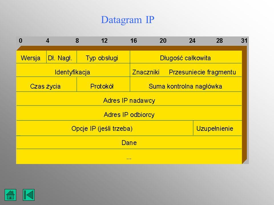 Datagram IP