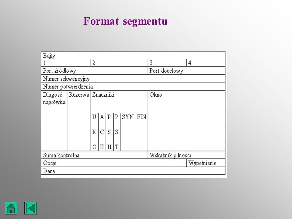 Format segmentu