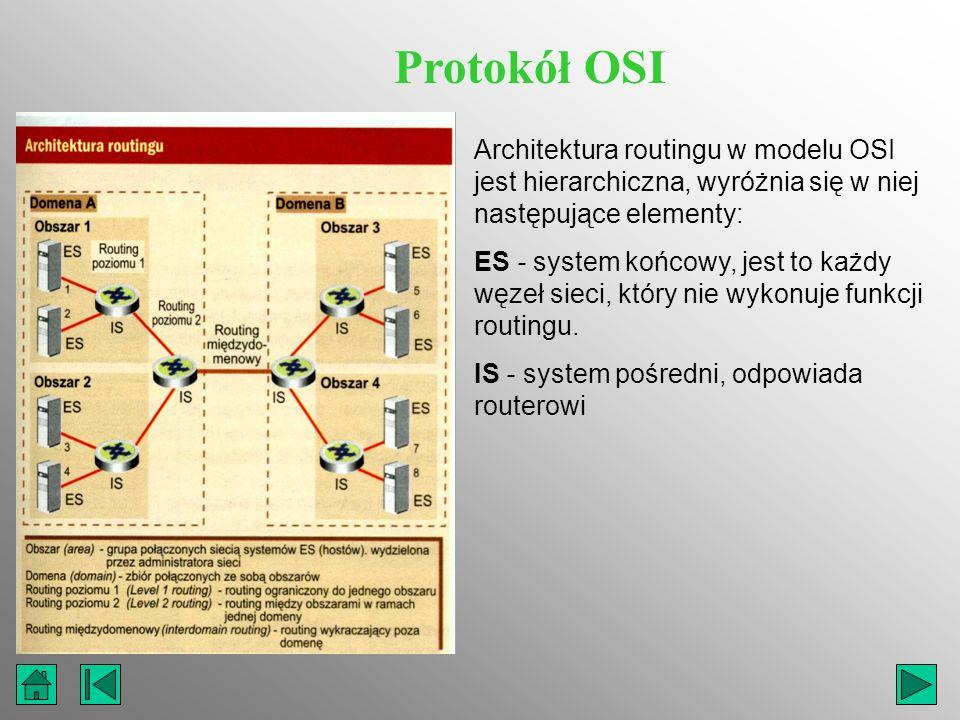 Protokół OSI Architektura routingu w modelu OSI jest hierarchiczna, wyróżnia się w niej następujące elementy: ES - system końcowy, jest to każdy węzeł