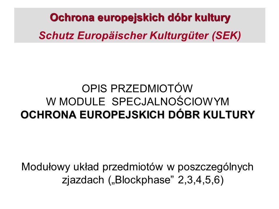 Ochrona europejskich dóbr kultury Ochrona europejskich dóbr kultury Schutz Europäischer Kulturgüter (SEK) OPIS PRZEDMIOTÓW W MODULE SPECJALNOŚCIOWYM O