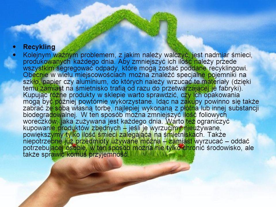 Recykling Kolejnym ważnym problemem, z jakim należy walczyć, jest nadmiar śmieci, produkowanych każdego dnia. Aby zmniejszyć ich ilość należy przede w