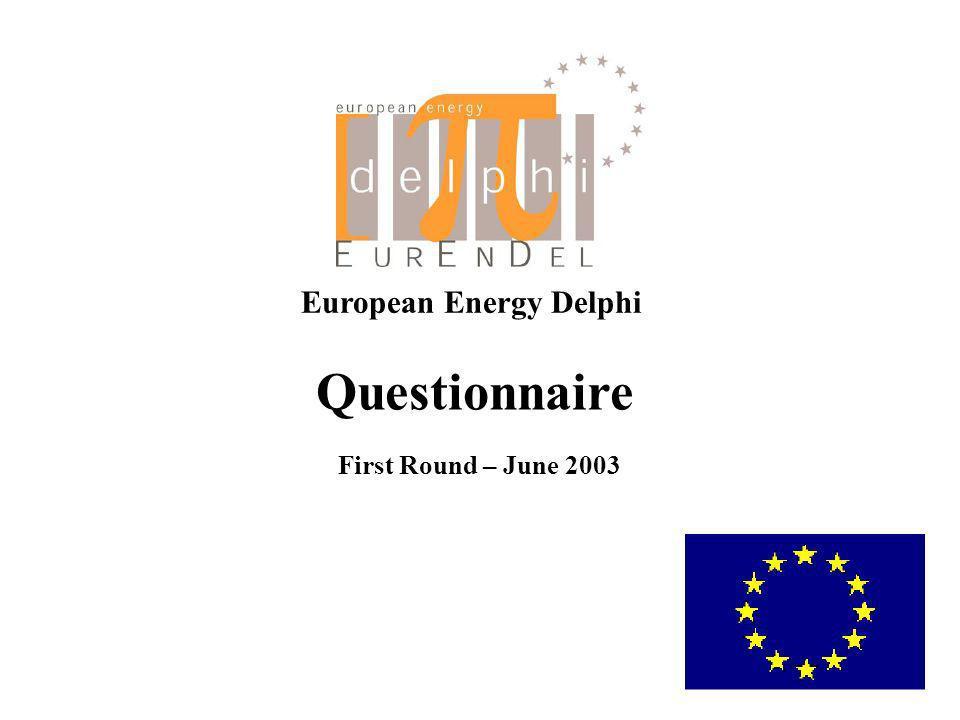 European Energy Delphi Questionnaire First Round – June 2003