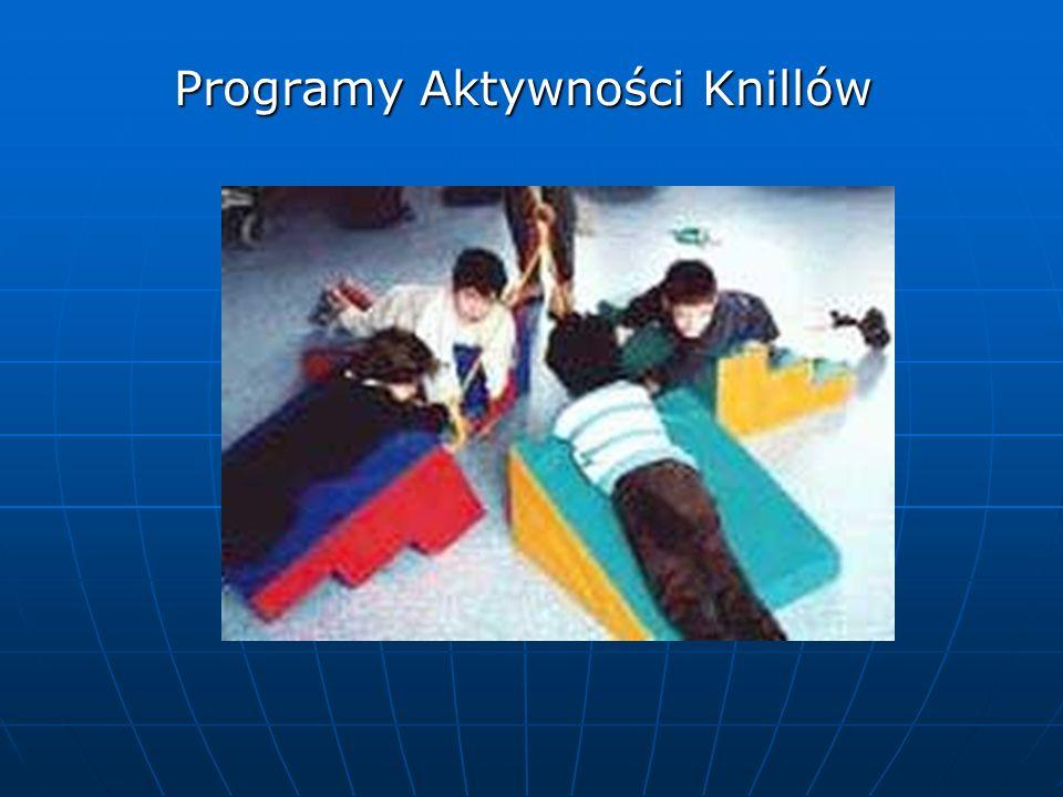 Programy Aktywności Knillów