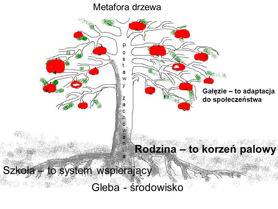 Metafora drzewa Gleba - środowisko Rodzina – to korzeń palowy Szkoła – to system wspierający Postawy zachowania…Postawy zachowania… Gałęzie – to adapt