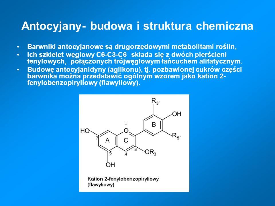 Antocyjany- budowa i struktura chemiczna Barwniki antocyjanowe są drugorzędowymi metabolitami roślin, Ich szkielet węglowy C6-C3-C6 składa się z dwóch pierścieni fenylowych, połączonych trójwęglowym łańcuchem alifatycznym.