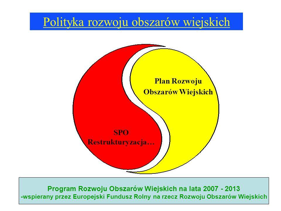 Polityka rozwoju obszarów wiejskich SPO Restrukturyzacja… Plan Rozwoju Obszarów Wiejskich Program Rozwoju Obszarów Wiejskich na lata 2007 - 2013 -wspi