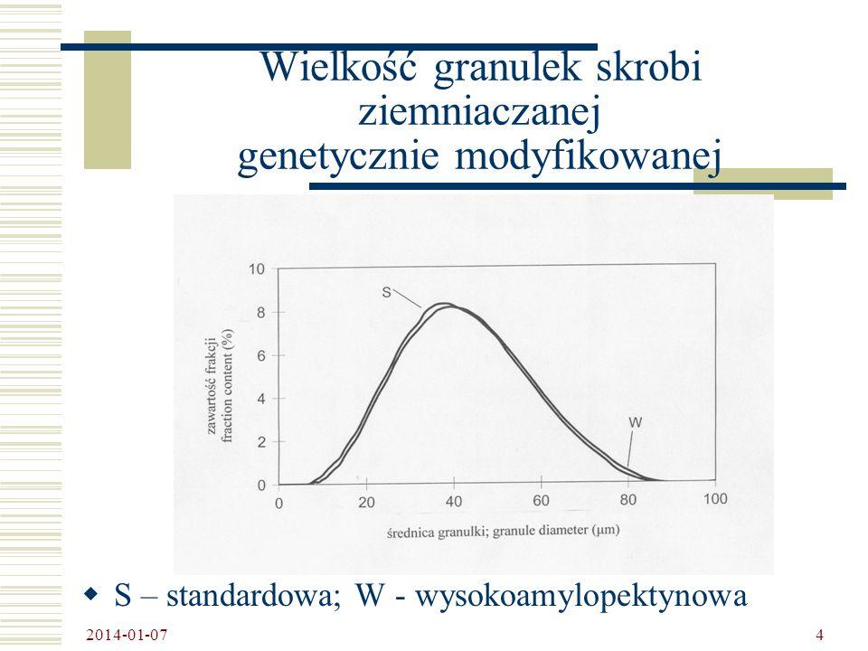 2014-01-07 15 Morfologia granulek skrobi ziemniaka o wyeliminowanej aktywności SSII + SSIII