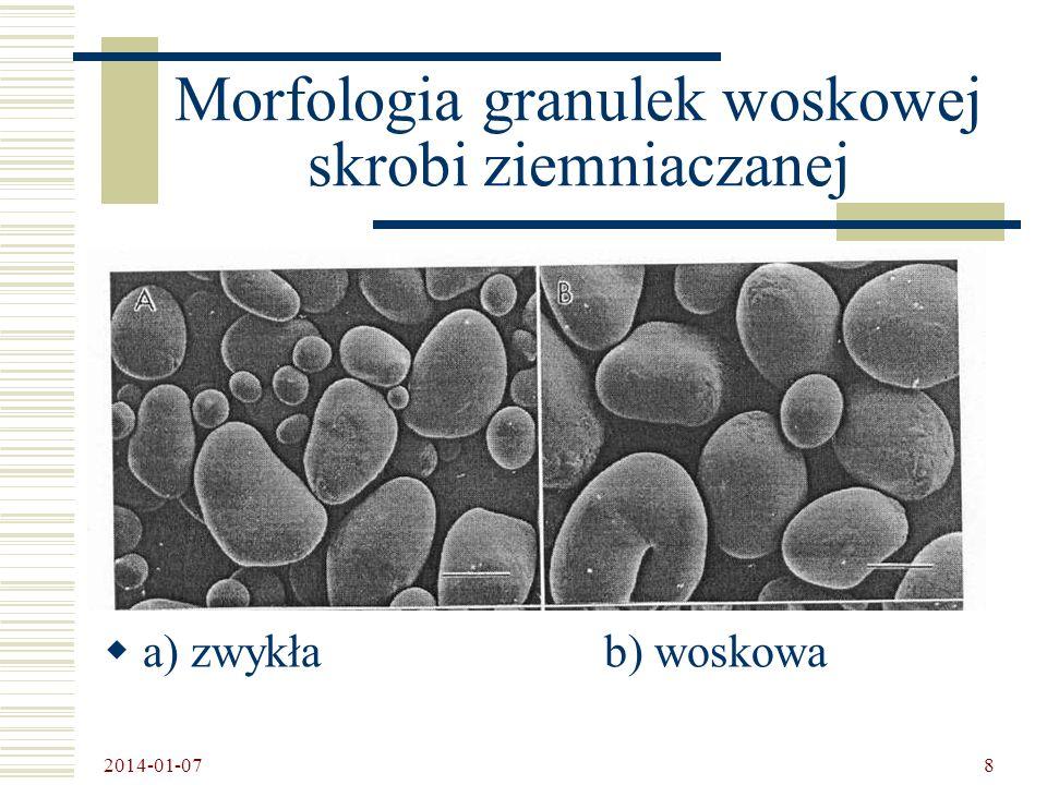 2014-01-07 9 Mutanty pszenicy o obniżonej zawartości amylozy
