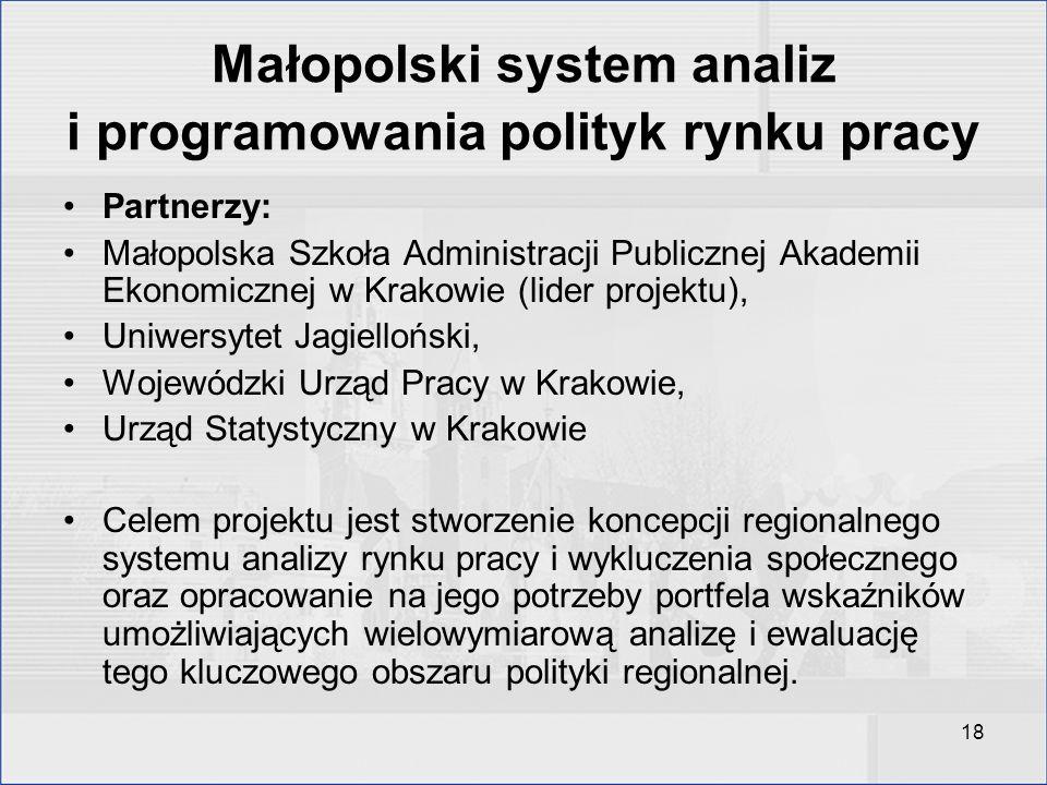 18 Małopolski system analiz i programowania polityk rynku pracy Partnerzy: Małopolska Szkoła Administracji Publicznej Akademii Ekonomicznej w Krakowie