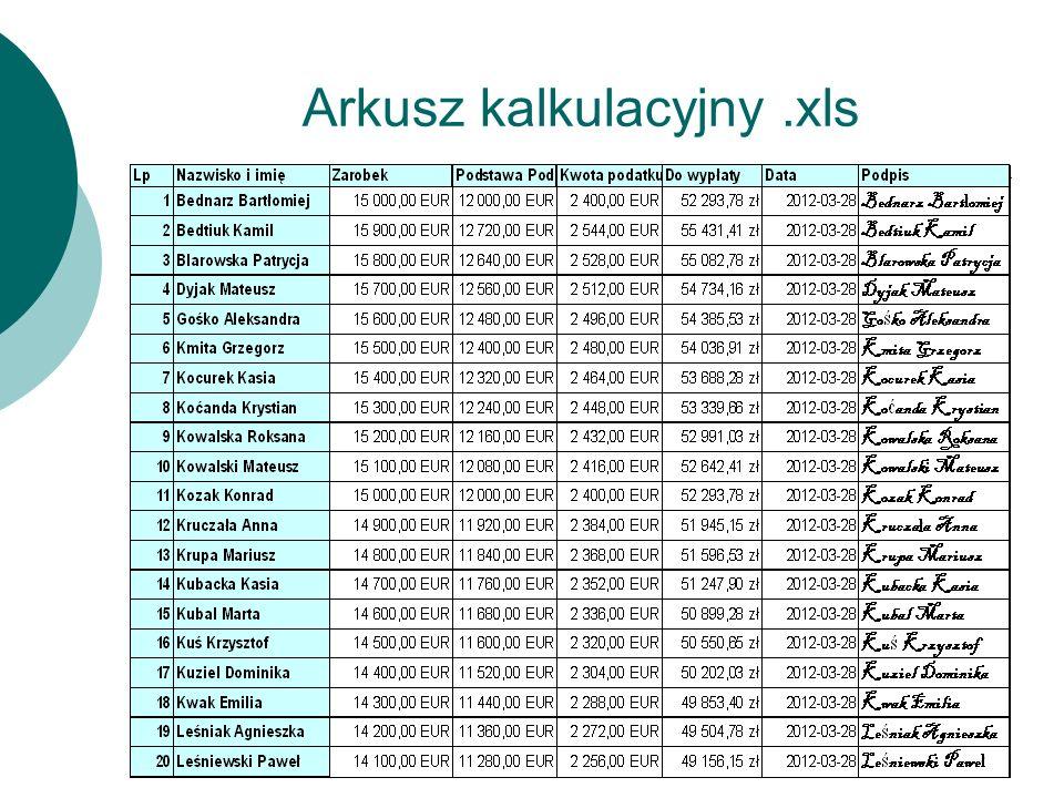 Arkusz kalkulacyjny.xls