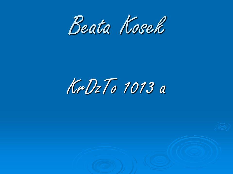 Zyciorys Mam na imię Beata Kosek.Urodziłam się 18 lutego 1993 roku w Krakowie.