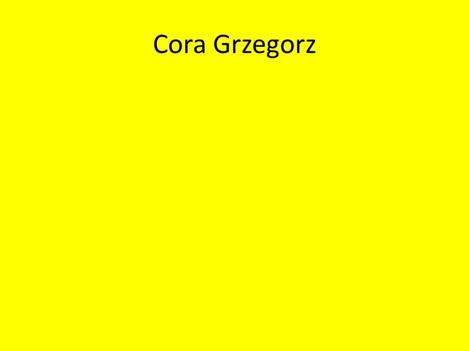 Ćwiczenie 1 Nazywam sie Grzegorz Cora, Urodzilem sie w Myslenicach 7 kwietnia 1989 roku, do szkoly podstawowej chodzilem do izdebnika jak rowniez i gimnazjum konczylem w izdebniku.
