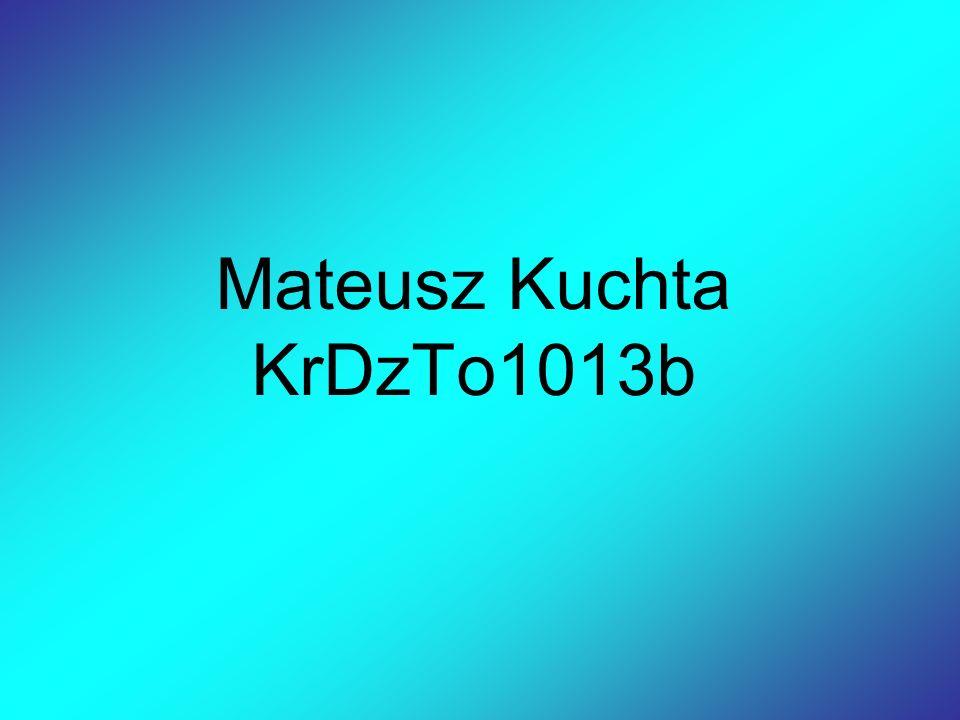 Ćwiczenie 1 Nazywam sie Mateusz Kuchta.