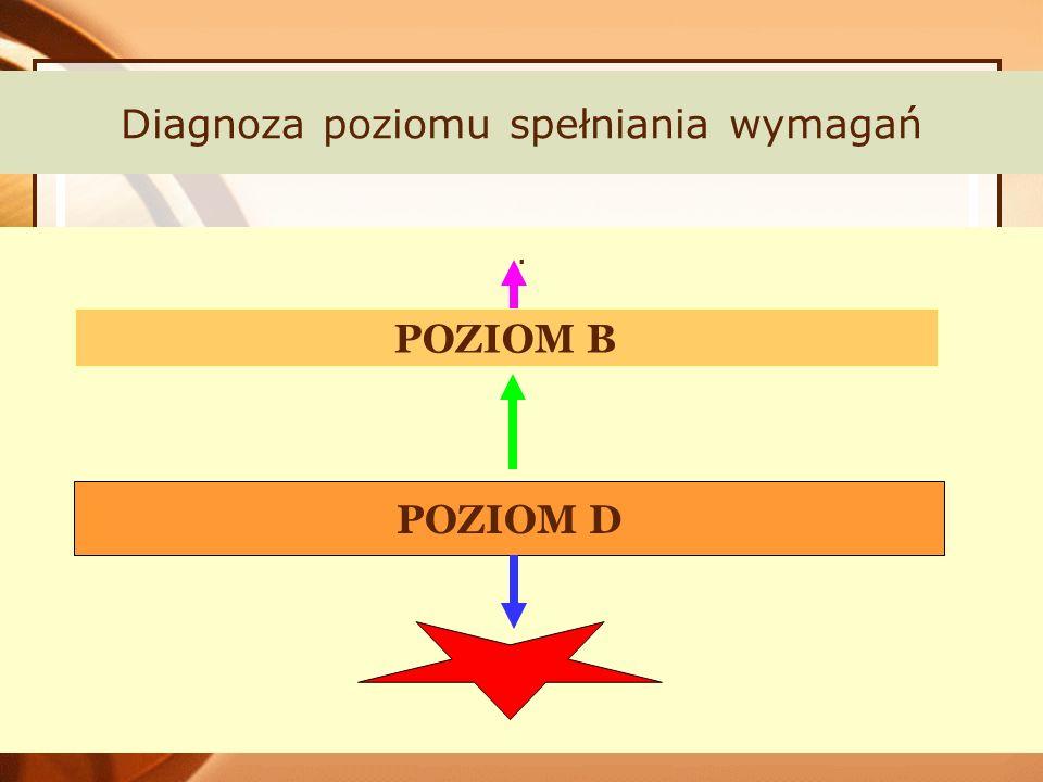 Diagnoza poziomu spełniania wymagań. POZIOM B POZIOM D