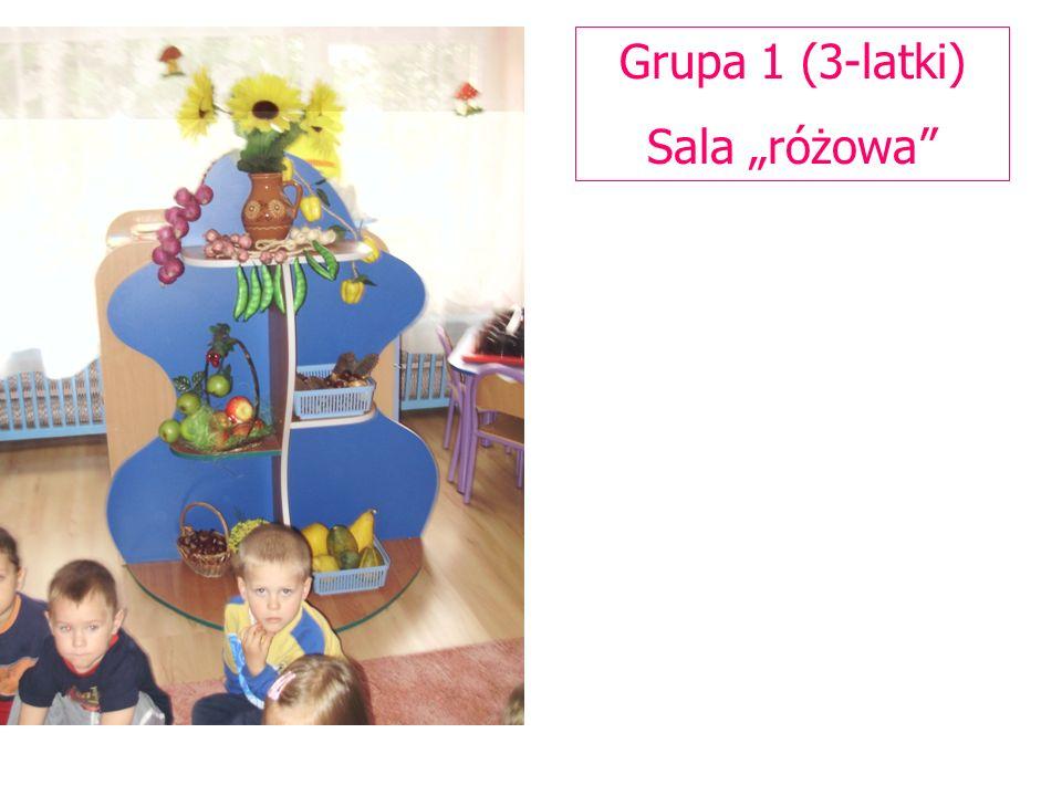 Grupa 1 (3-latki) Sala różowa