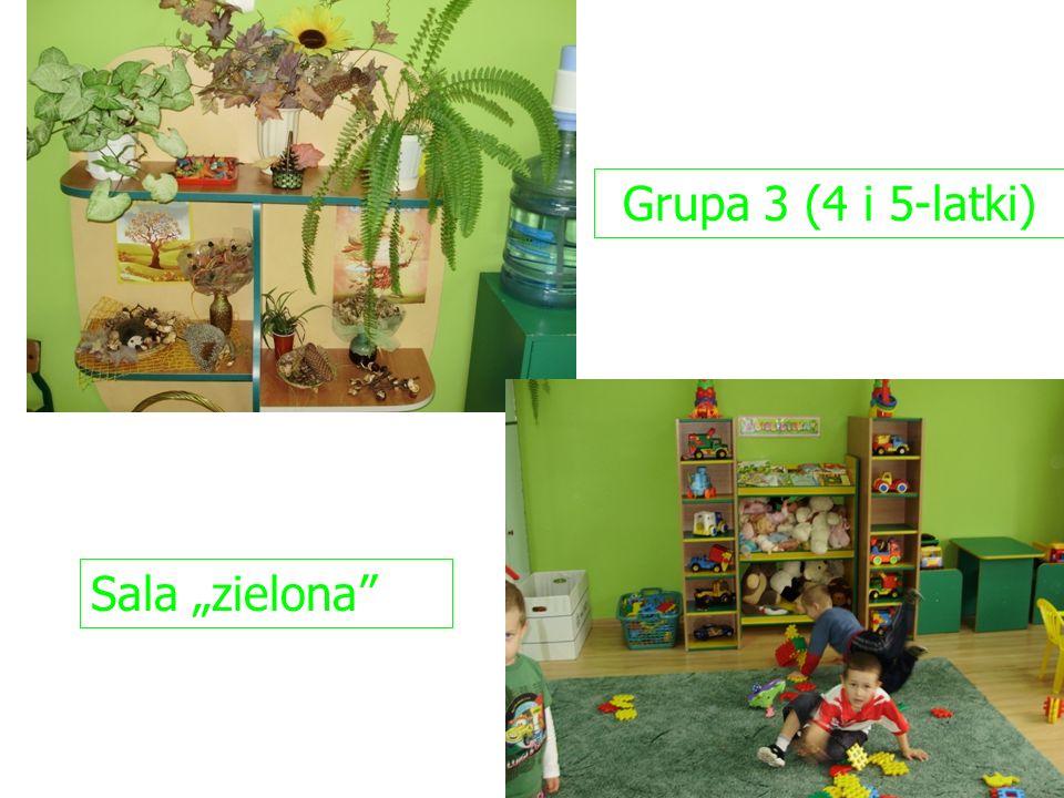 Grupa 3 (4 i 5-latki) Sala zielona