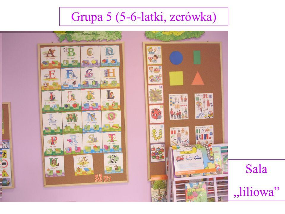 Grupa 5 (5-6-latki, zerówka) Sala liliowa