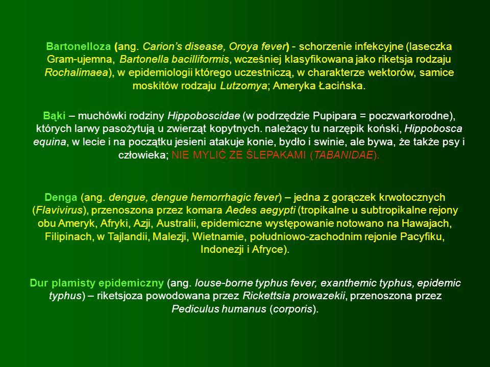 Bartonelloza (ang. Carions disease, Oroya fever) - schorzenie infekcyjne (laseczka Gram-ujemna, Bartonella bacilliformis, wcześniej klasyfikowana jako