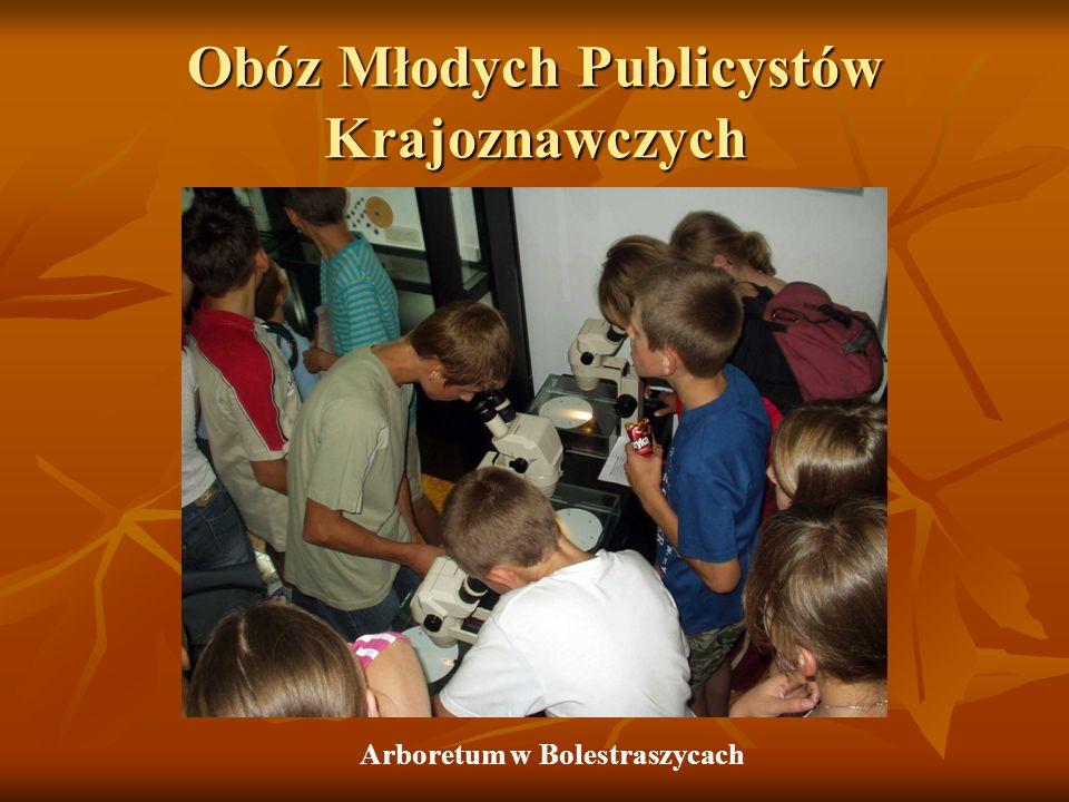Obóz Młodych Publicystów Krajoznawczych Arboretum w Bolestraszycach