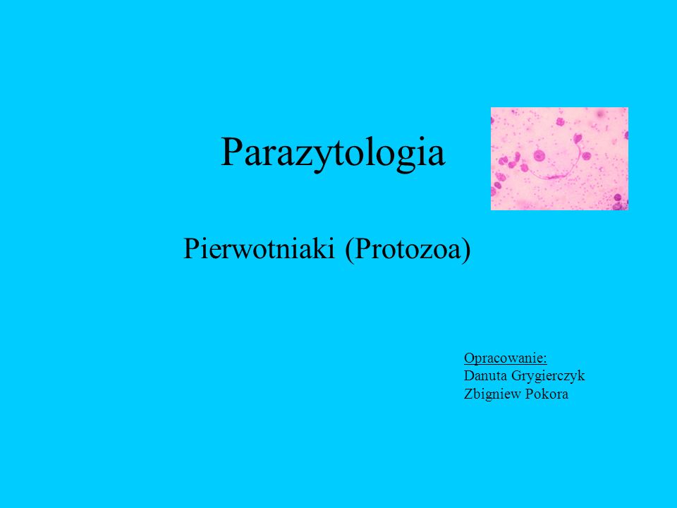 Parazytologia Pierwotniaki (Protozoa) Opracowanie: Danuta Grygierczyk Zbigniew Pokora