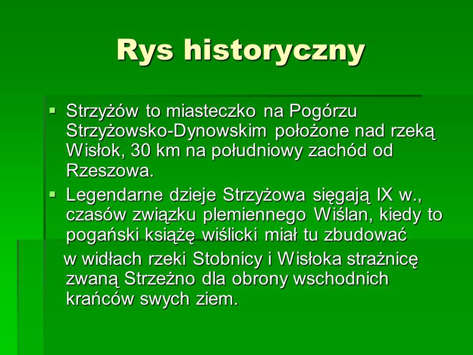 Rys historyczny Strzyżów to miasteczko na Pogórzu Strzyżowsko-Dynowskim położone nad rzeką Wisłok, 30 km na południowy zachód od Rzeszowa. Strzyżów to