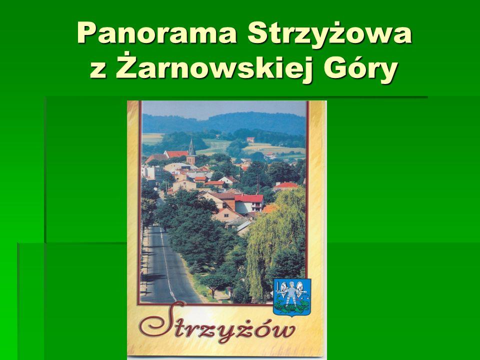 Panorama Strzyżowa z Żarnowskiej Góry