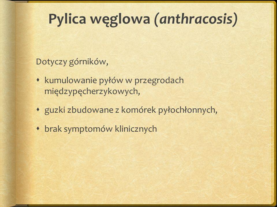 Pylica węglowa (anthracosis) Dotyczy górników, kumulowanie pyłów w przegrodach międzypęcherzykowych, guzki zbudowane z komórek pyłochłonnych, brak sym