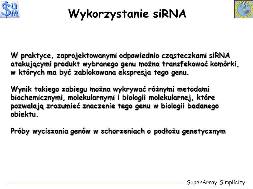 Wykorzystanie siRNA SuperArray Simplicity W praktyce, zaprojektowanymi odpowiednio cząsteczkami siRNA atakującymi produkt wybranego genu można transfe