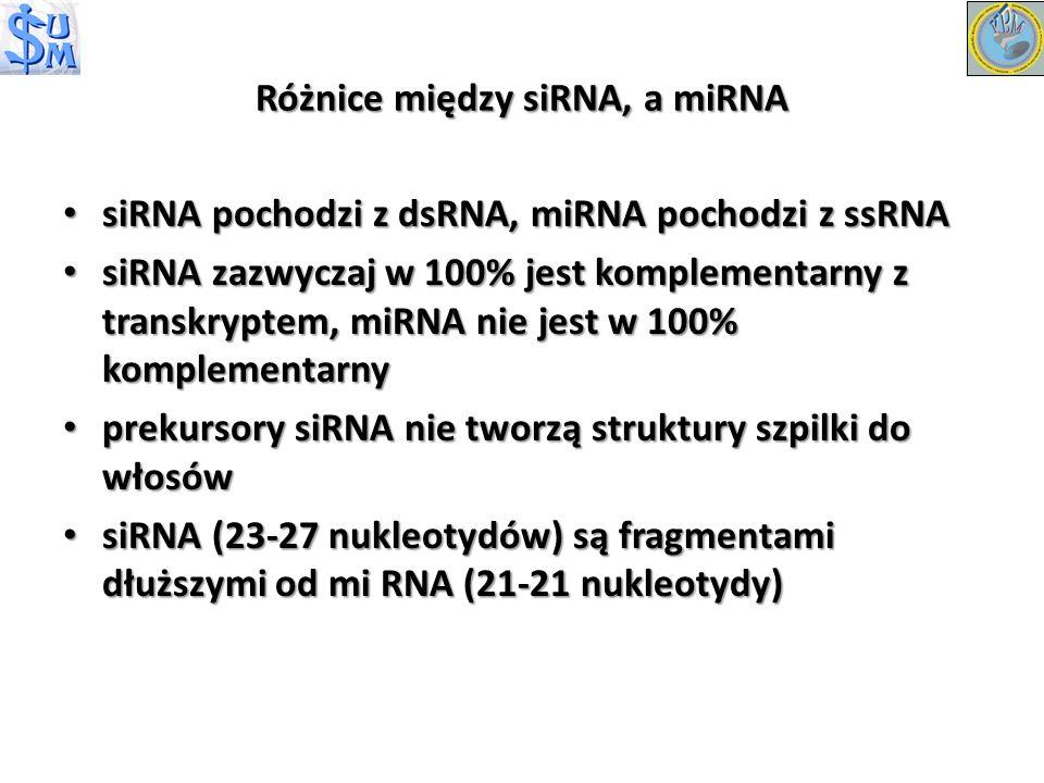Różnice między siRNA, a miRNA siRNA pochodzi z dsRNA, miRNA pochodzi z ssRNA siRNA pochodzi z dsRNA, miRNA pochodzi z ssRNA siRNA zazwyczaj w 100% jes