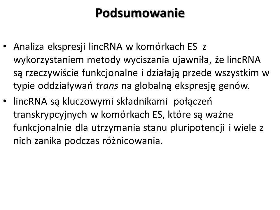 Podsumowanie Analiza ekspresji lincRNA w komórkach ES z wykorzystaniem metody wyciszania ujawniła, że lincRNA są rzeczywiście funkcjonalne i działają