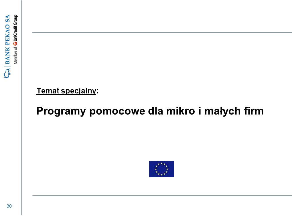 30 Temat specjalny: Programy pomocowe dla mikro i małych firm