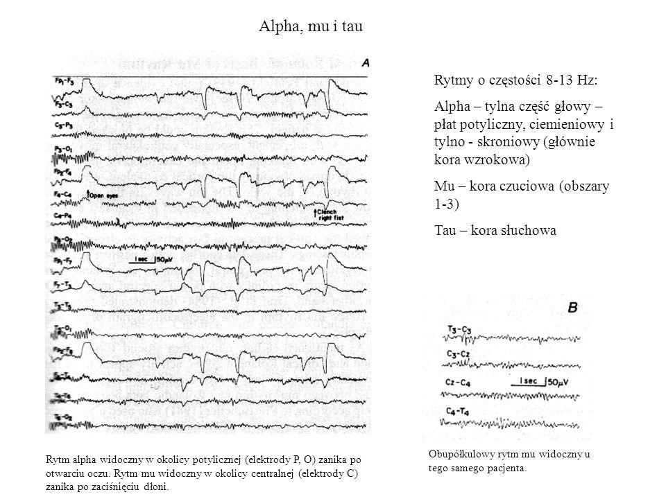 Alpha, mu i tau Rytm alpha widoczny w okolicy potylicznej (elektrody P, O) zanika po otwarciu oczu. Rytm mu widoczny w okolicy centralnej (elektrody C