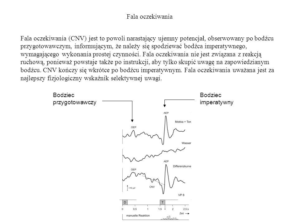 Fala oczekiwania Fala oczekiwania (CNV) jest to powoli narastający ujemny potencjał, obserwowany po bodźcu przygotowawczym, informującym, że należy si